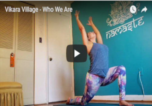 Why We Started Vikara Village